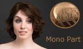Mono Part