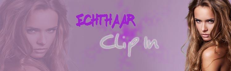 Clip in